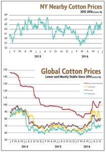 cottoncharts